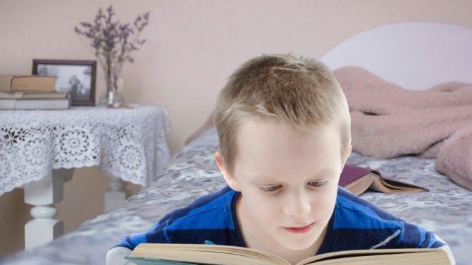 Le meilleur cadeau pour les enfants qui aiment les livres et les sciences